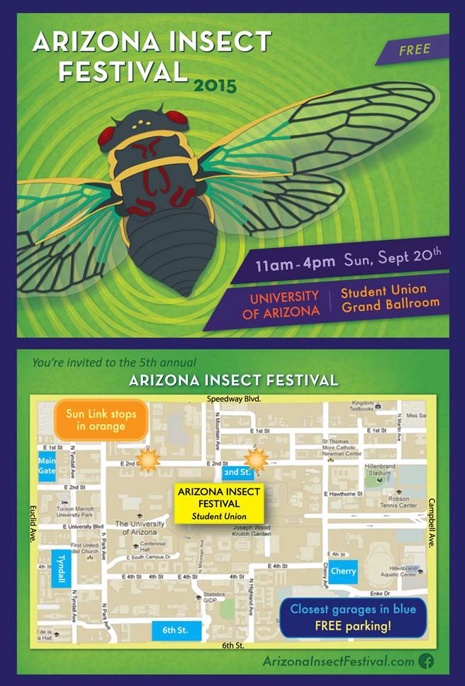 insect festival flyer